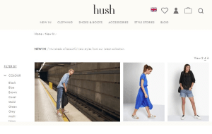 Preview 2 of the Hush website