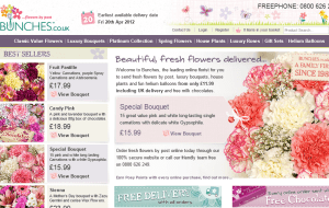 Preview 2 of the Bunches Flowers website