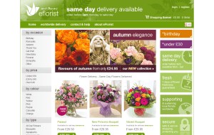 Preview 2 of the eFlorist website
