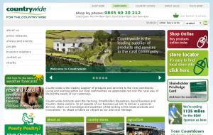 Preview 2 of the Countrywide website
