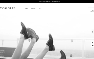 Preview 3 of the Coggles website
