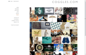 Preview 2 of the Coggles website