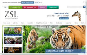 Preview 3 of the London Zoo website