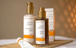 Preview 3 of the Dr Hauschka website