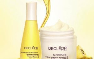 Preview 3 of the Decleor website