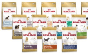 Preview 3 of the Royal Canin website