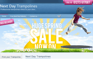 Preview 3 of the Pro Trampolines website