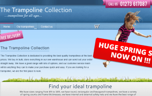 Preview 2 of the Pro Trampolines website