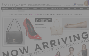 Preview 3 of the Bloomingdales website