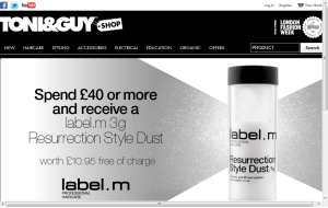 Preview 3 of the Toni & Guy website