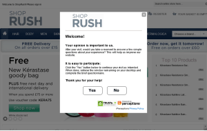Preview 3 of the Rush Shop website