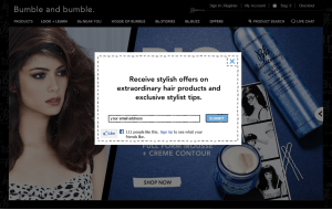 Preview 3 of the Bumble and Bumble website