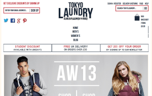 Preview 2 of the Tokyo Laundry website
