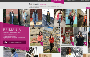 Preview 3 of the Primark website