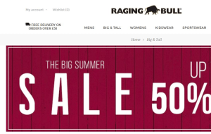 Preview 2 of the Raging Bull website