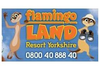 Flamingo Land clearance starting soon